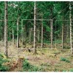 Constructing a False Reality: Chris Engman's Photographs