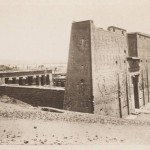 Simmetry and Alignments: The Temple of Horus in Edfu