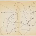Fields of Indeterminacy: Toshi Ichiyanagi's Fluxus Scores