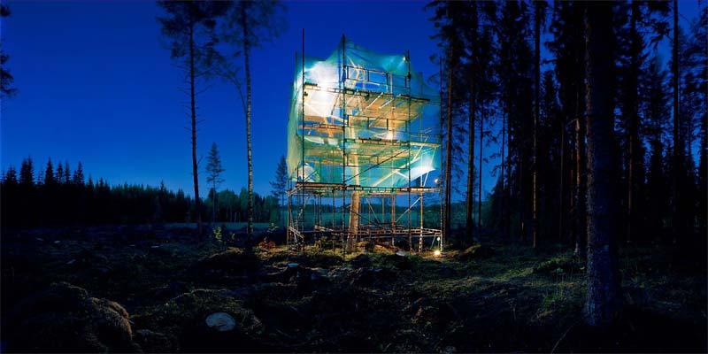 Tree works Evolution Of Tree Ilkka Halso