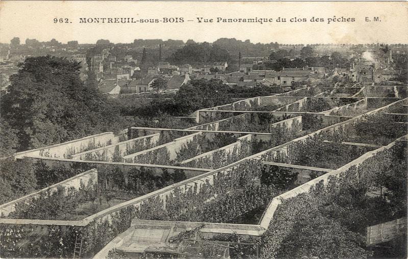 building microclimate Murs à pêches Montreuil on Socks-studio.com
