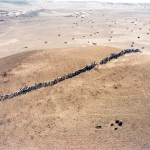 "A Line in the Landscape: Francis Alÿs ""When Faith Moves Mountains"""