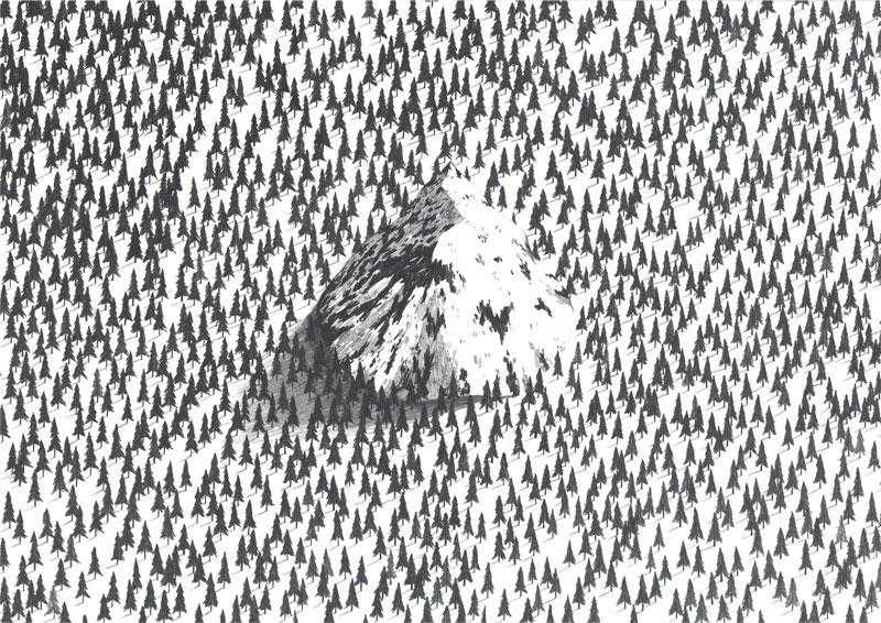 jamie mills mountain illustration forest