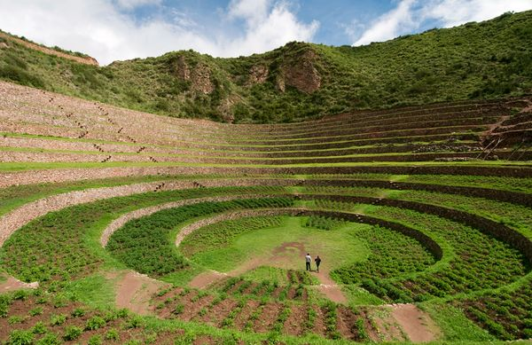 Artificial Microclimates: Inca Experimental Agriculture Station at ...