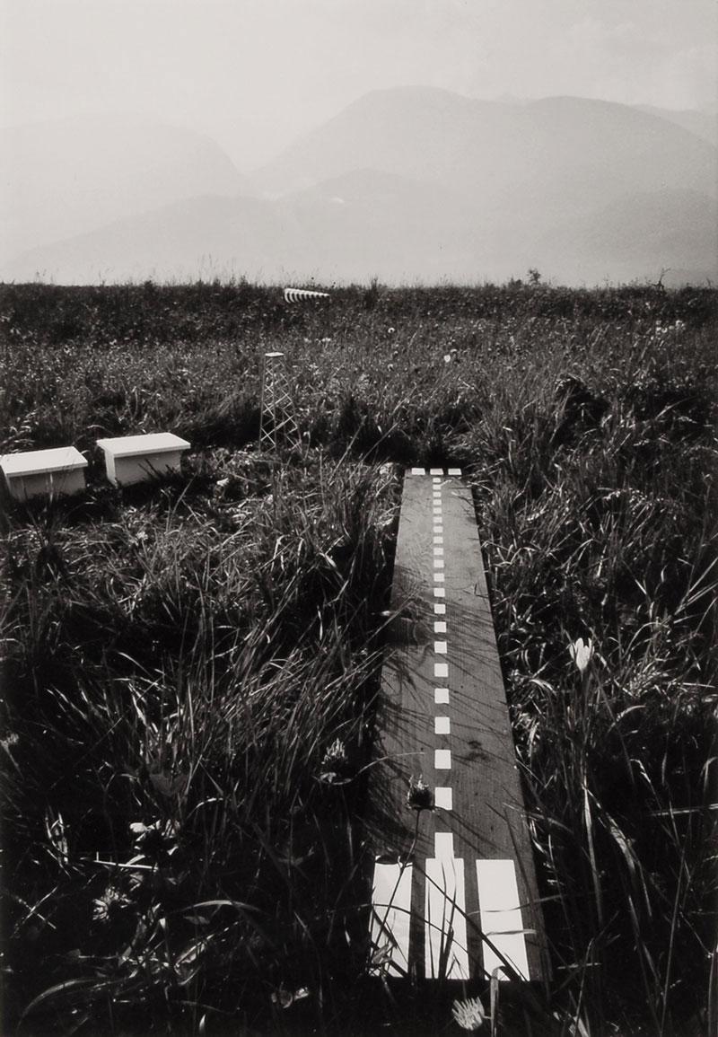 Disegno di un aeroporto per millepiedi, 1976