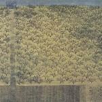 Tanaka Ryohei's Deserted Etchings